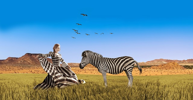 when you hear hoof beats, think of horses and not zebras